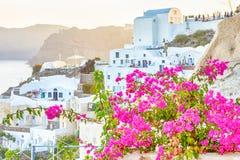 Ρομαντικός προορισμός Μέρη των λουλουδιών μπροστά από τη γραφική εικονική παράσταση πόλης Oia του χωριού στο νησί Santorini με ηφ στοκ εικόνες με δικαίωμα ελεύθερης χρήσης