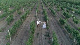 Ρομαντικό αγροτικό ζεύγος που χορεύει και που τρέχει στον αμπελώνα κατά τη σε αργή κίνηση, εναέρια άποψη φιλμ μικρού μήκους