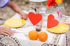 Ρομαντικό γεύμα στην έννοια φύσης Στοκ Εικόνα