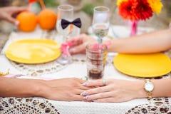 Ρομαντικό γεύμα στην έννοια φύσης Στοκ Εικόνες