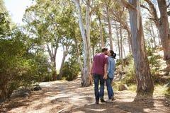 Ρομαντικό ζεύγος που κατά μήκος της δασικής πορείας από κοινού Στοκ Φωτογραφίες