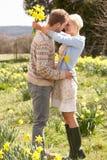 Ρομαντικό ζεύγος που περπατά μεταξύ της άνοιξης Daffodils στοκ εικόνες