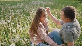 Ρομαντικό ζεύγος σε ένα πράσινο λιβάδι μεταξύ πολλών πικραλίδων Εξετάζουν ο ένας τον άλλον μάτια ` s ευτυχής από κοινού Καλοκαίρι απόθεμα βίντεο