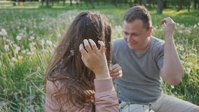Ρομαντικό ζεύγος το καλοκαίρι σε ένα καθάρισμα μεταξύ των άσπρων πικραλίδων Τινάζουν τις πικραλίδες από την τρίχα τους αμοιβαίος φιλμ μικρού μήκους