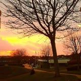 ρομαντικό ηλιοβασίλεμα Στοκ Εικόνες