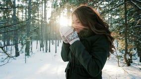Ρομαντικό κορίτσι που απολαμβάνει ένα ποτό στο αναδρομικά φωτισμένο φως του ήλιου, νέο τσάι κατανάλωσης γυναικών, καφές στο χειμε απόθεμα βίντεο