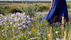 Ρομαντικό κορίτσι που περπατά στα λουλούδια σε ένα μπλε φόρεμα απόθεμα βίντεο