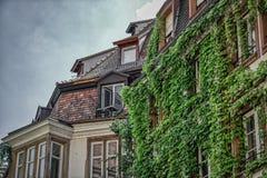 Ρομαντικό μπαλκόνι με τον κισσό σε Strassburg στοκ φωτογραφία