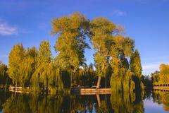 Ρομαντικό νησί, Ternopil, Ουκρανία στοκ φωτογραφίες με δικαίωμα ελεύθερης χρήσης
