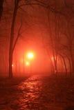 Ρομαντικό πάρκο τη νύχτα Στοκ φωτογραφία με δικαίωμα ελεύθερης χρήσης