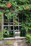 ρομαντικό παράθυρο Στοκ Φωτογραφία