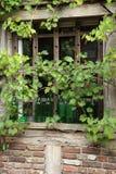 ρομαντικό παράθυρο στοκ εικόνες