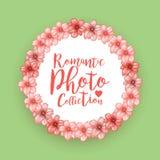 Ρομαντικό πλαίσιο φωτογραφιών κύκλων με τα ρόδινα λουλούδια κερασιών Στοκ Εικόνα