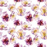 Ρομαντικό στεφάνι λουλουδιών anemone watercolor Στοκ φωτογραφίες με δικαίωμα ελεύθερης χρήσης