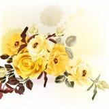 Ρομαντικό σχέδιο Grunge με τα μπεζ τριαντάφυλλα Στοκ φωτογραφίες με δικαίωμα ελεύθερης χρήσης