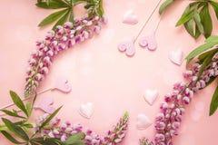 Ρομαντικό υπόβαθρο με τα λουλούδια lupine και τις διακοσμητικές καρδιές επάνω Στοκ Φωτογραφία