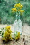 Ρομαντικό υπόβαθρο με το φλυτζάνι του τσαγιού, των λουλουδιών και του ανοικτού βιβλίου Στοκ Εικόνες