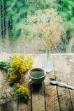 Ρομαντικό υπόβαθρο με το φλυτζάνι του τσαγιού, των λουλουδιών και του ανοικτού βιβλίου Στοκ Φωτογραφία