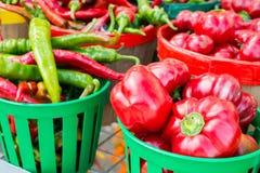 Ρουμανικά πιπέρια Gogosari και Carmer στοκ εικόνα