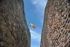 Ρουμανική σημαία στοκ εικόνες