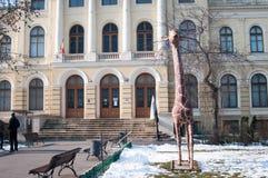 Ρουμανικό φυσικό μουσείο της εισόδου ιστορίας Στοκ εικόνες με δικαίωμα ελεύθερης χρήσης