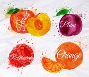 Ροδάκινο watercolor φρούτων, σμέουρο, δαμάσκηνο, πορτοκάλι Στοκ Εικόνες