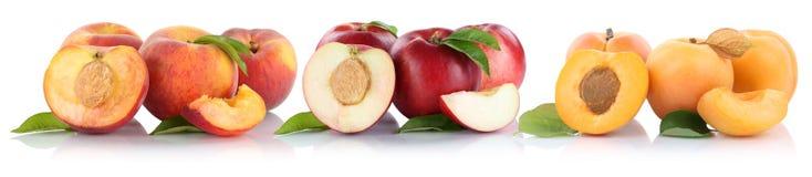 Ροδάκινων νεκταρινιών βερίκοκων φετών φρούτα φρούτων που απομονώνονται μισά στο μόριο Στοκ Εικόνες