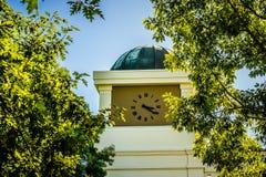 Ρολόι και δέντρο Καλιφόρνιας Στοκ φωτογραφία με δικαίωμα ελεύθερης χρήσης