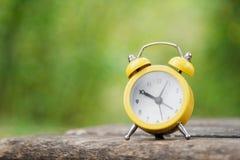 Ρολόι στη φύση Στοκ Εικόνες