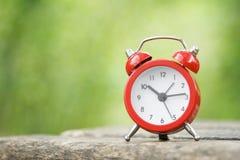 Ρολόι στη φύση Στοκ φωτογραφία με δικαίωμα ελεύθερης χρήσης