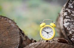 Ρολόι στη φύση Στοκ εικόνες με δικαίωμα ελεύθερης χρήσης