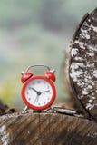 Ρολόι στη φύση Στοκ εικόνα με δικαίωμα ελεύθερης χρήσης