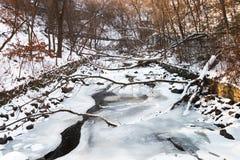 Ρυάκι που καλύπτεται με τον πάγο σε ένα πάρκο Στοκ φωτογραφία με δικαίωμα ελεύθερης χρήσης