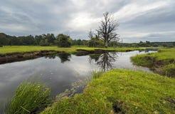 Ρυάκι χορτοταπήτων μύλων στο νέο δάσος Στοκ φωτογραφία με δικαίωμα ελεύθερης χρήσης