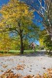 ρυθμιστής φθινοπώρου Στοκ εικόνες με δικαίωμα ελεύθερης χρήσης