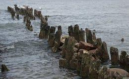 Ρυθμός και η θάλασσα της Βαλτικής Στοκ Φωτογραφία