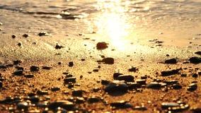 Ρυθμός Seacost στην άμμο με το κύμα στην παραλία στο ηλιοβασίλεμα απόθεμα βίντεο