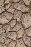 Ρωγμές στο ξηρό χώμα. Στοκ εικόνες με δικαίωμα ελεύθερης χρήσης