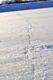 Ρωγμή στον πάγο Στοκ φωτογραφίες με δικαίωμα ελεύθερης χρήσης