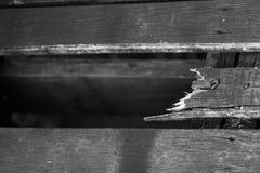 Ρωγμή του ξύλου Στοκ φωτογραφίες με δικαίωμα ελεύθερης χρήσης