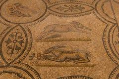 Ρωμαϊκά μωσαϊκά πατωμάτων, Aquileia, Ιταλία Στοκ Εικόνες