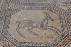 Ρωμαϊκά μωσαϊκά πατωμάτων, Aquileia, Ιταλία Στοκ Φωτογραφίες