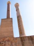 Ρωμαϊκές στήλες Καρθαγένη Τυνησία λουτρών Στοκ φωτογραφία με δικαίωμα ελεύθερης χρήσης