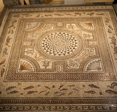 Ρωμαϊκό μωσαϊκό Λυών Γαλλία στοκ φωτογραφία με δικαίωμα ελεύθερης χρήσης