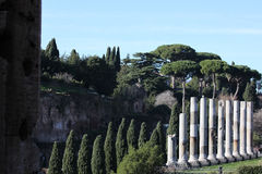 Ρωμαϊκό φόρουμ στοκ φωτογραφία με δικαίωμα ελεύθερης χρήσης