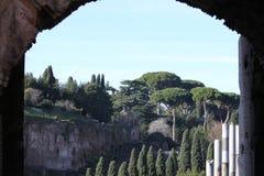 Ρωμαϊκό φόρουμ στοκ φωτογραφίες