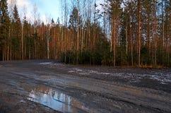 Ρωσία Έδαφος του βρεφικού σταθμού ` Talvi Ukko ` σκυλιών 14 Νοεμβρίου 2017 Στοκ Φωτογραφίες