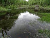 Ρωσία Ένα ταξίδι στην κεντρική Ρωσία Nelidovo Φθινόπωρο Στοκ Εικόνα