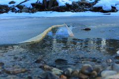 Ρωσία Ρωσική δασική άνοιξη στη Ρωσία η όμορφη φύση, ο ποταμός το χειμώνα, όμορφα σχέδια, καθαρίζει το νερό Στοκ Φωτογραφίες