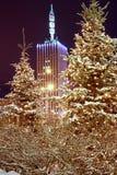 Ρωσία. Arkhangelsk. Στοκ εικόνες με δικαίωμα ελεύθερης χρήσης